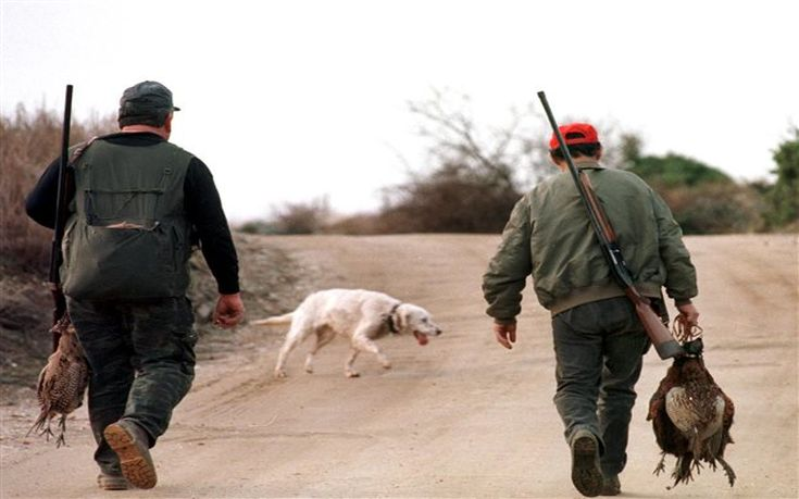 Κυνηγός πυροβόλησε και τραυμάτισε κατά λάθος φίλο του