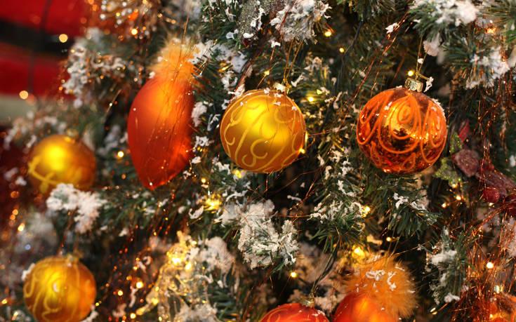 Θεσσαλονίκη: Αντίστροφη μέτρηση για την ανακύκλωση των φυσικών χριστουγεννιάτικων δέντρων
