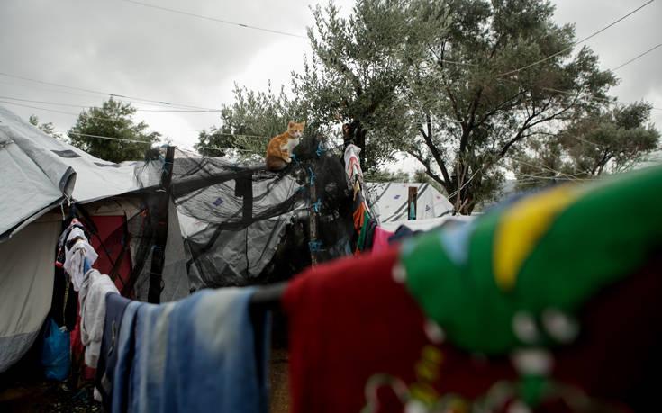Προσφυγικό: Διακόπτει κάθε συνεργασία με την κυβέρνηση η περιφέρεια Βορείου Αιγαίου