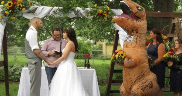 Νύφη είπε στην αδερφή της να βάλει «ό,τι θέλει» στον γάμο της κι εκείνη ντύθηκε δεινόσαυρος