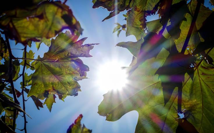 Καιρός: Μέχρι τους 20 βαθμούς η θερμοκρασία σήμερα Παρασκευή – Επιδείνωση από Κυριακή