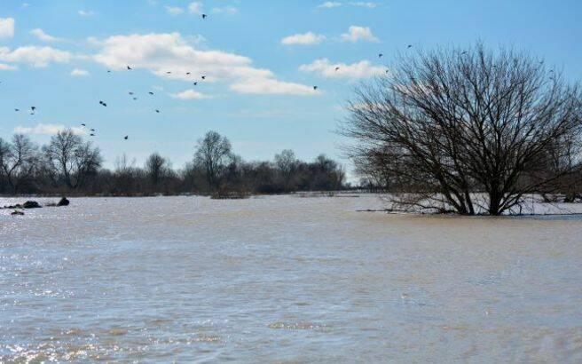 Αυξάνεται η στάθμη του ποταμού Έβρου – Σε επιφυλακή οι ελληνικές Αρχές