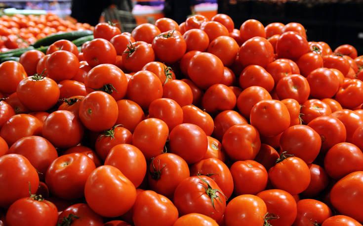 Απάτη με 23 τόνους ντομάτες στην Κρήτη – Έκαναν φτερά 16.000 ευρώ