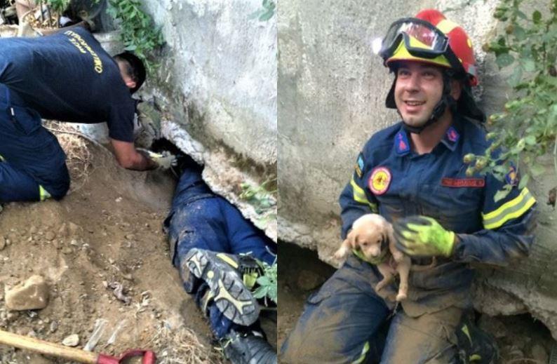Ηράκλειο: Πυροσβέστες-ήρωες έσωσαν εγκλωβισμένο κουταβάκι από βέβαιο θάνατο