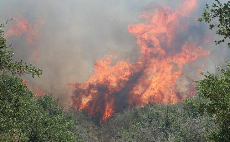 Φωτιά στην Κεφαλονιά: Ισχυρές πυροσβεστικές δυνάμεις στο σημείο