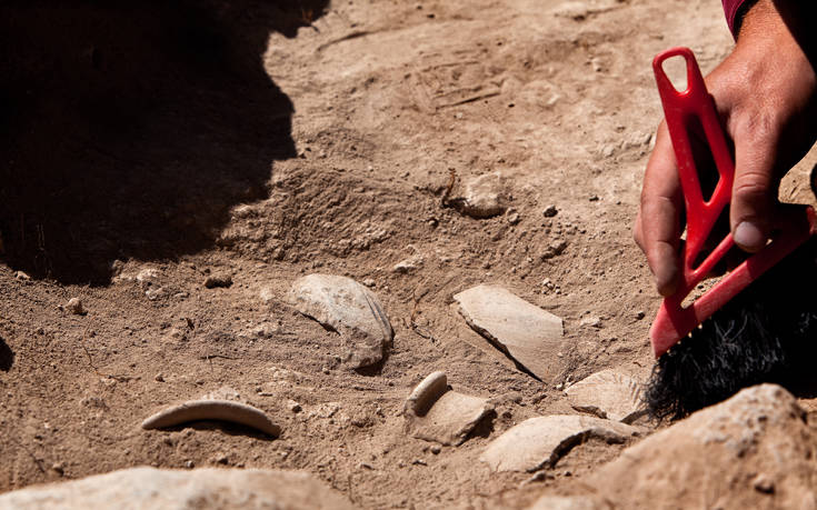 Έφυγε από τη ζωή η αρχαιολόγος Πέπη Λαζαρίδου