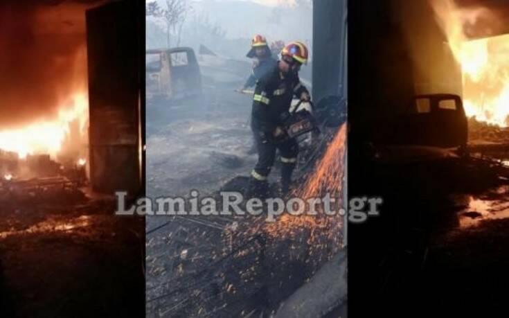 Ολονύχτια μάχη με τις φλόγες στη δυτική Φθιώτιδα – Κινδύνευσαν πυροσβέστες
