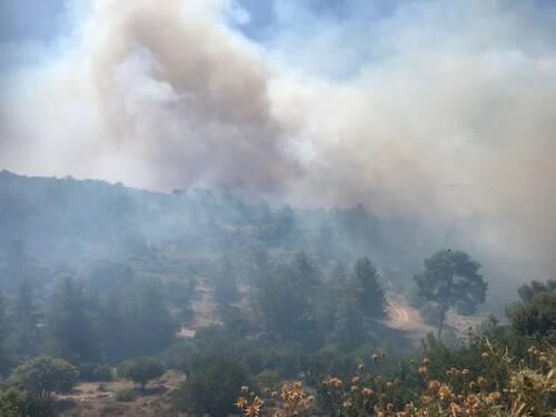 Μεγάλη πυρκαγιά στην Κύπρο – Ισχυρές δυνάμεις της Πυροσβεστικής στο σημείο