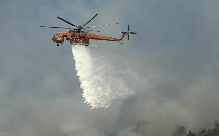 Φωτιά τώρα στην Πελλάνα Λακωνίας