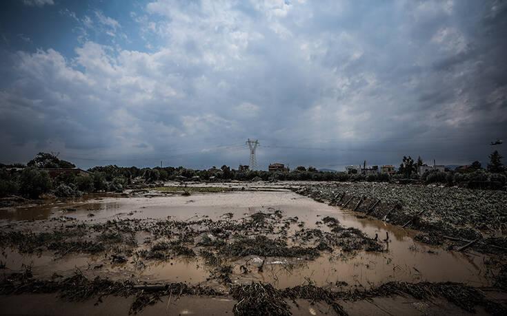 Τραγωδία στην Εύβοια: Κύπριος το όγδοο θύμα από τις πλημμύρες – Ήταν στενός συνεργάτης του Γλαύκου Κληρίδη