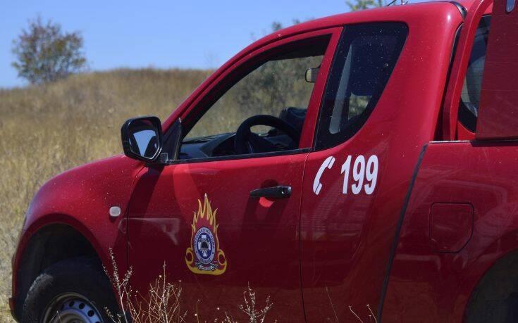 Μεσσηνία: Οριοθετημένη η φωτιά στην περιοχή Ξερόκαμπος