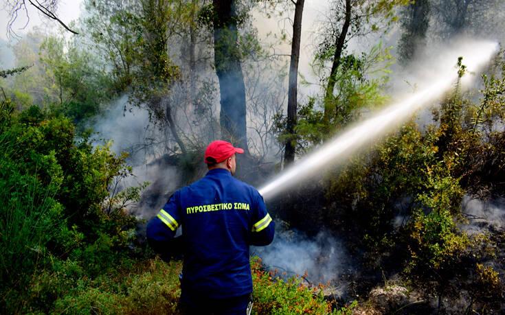 Υπό μερικό έλεγχο η φωτιά στην περιοχή Κολοκυθάς στην Ηλεία