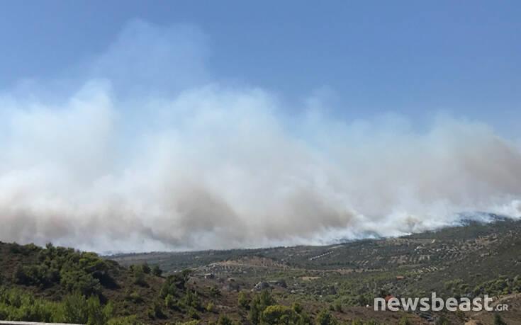 Ανεξέλεγκτη η φωτιά σε Ανάβυσσο – Κερατέα: Καίγονται σπίτια – Δείτε LIVE εικόνα από την περιοχή