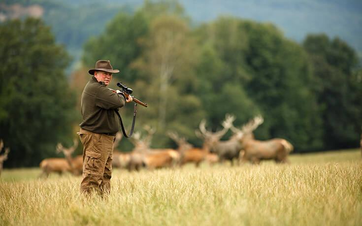 Στην Τσεχία καταζητείται… ένα ελάφι που έκλεψε την καραμπίνα ενός κυνηγού