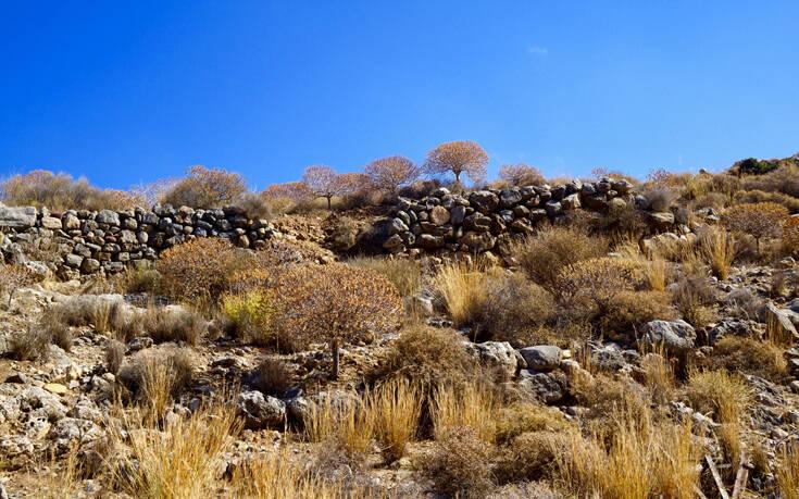 Το φαράγγι των νεκρών στην Κρήτη