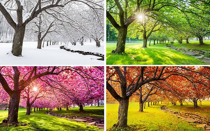 Ένας στους τρεις πιστεύει ότι αυτή είναι η καλύτερη εποχή του χρόνου