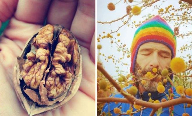 Θανάσης Ευθυμιάδης: «Καθαρίζω καρύδια, σκέφτοντας καρύδια, και αυτό είναι έρωτας»