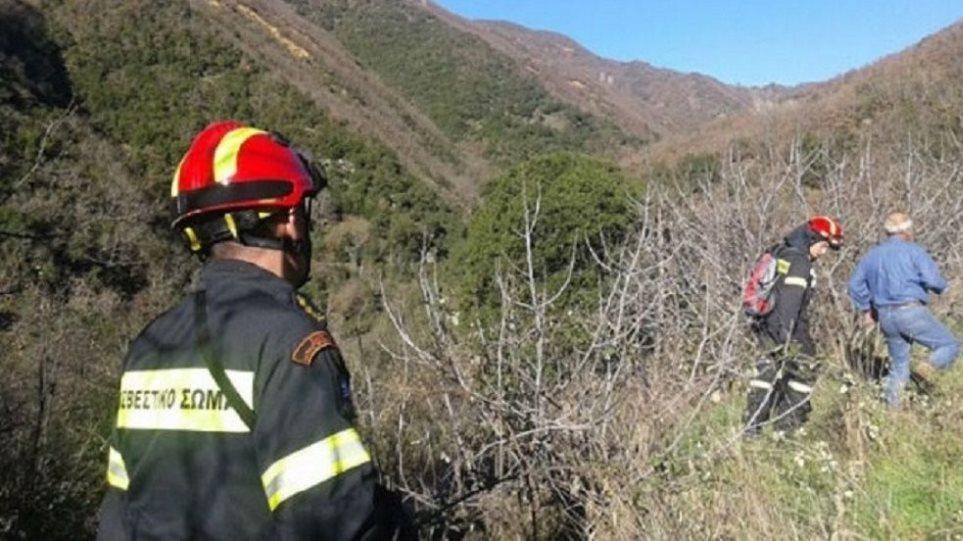 Αυτοκίνητο έπεσε σε γκρεμό στην Κερατέα – Άμεση κινητοποίηση πυροσβεστικής και ΕΜΑΚ