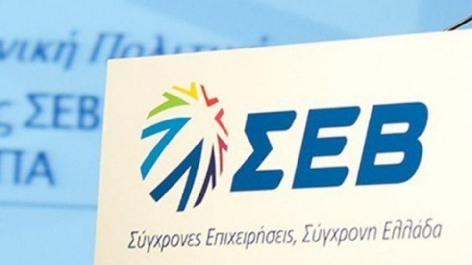 Ψηφιακό συνέδριο ΣΕΒ- Endeavor: Η πανδημία θα βοηθήσει στην ανάπτυξη του ελληνικού οικοσυστήματος καινοτομίας