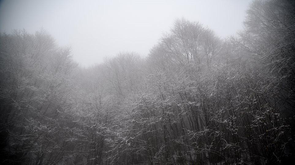 Καιρός: Άνοιξε η «ψαλίδα» των μεγίστων θερμοκρασιών: 7 βαθμούς στις Πρέσπες, 33 στην Κρήτη!