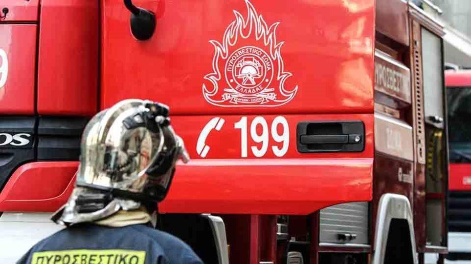 Φωτιά στην περιοχή Παλούκια στη Σαλαμίνα