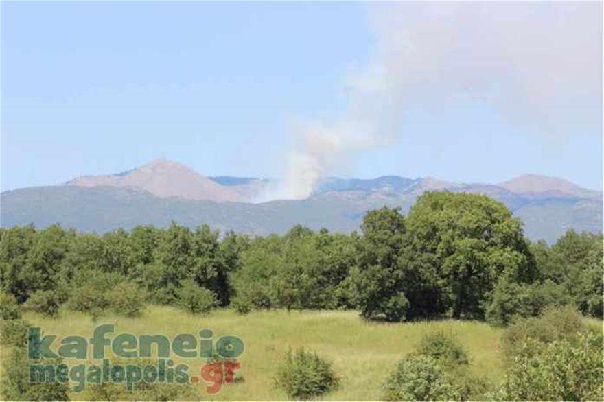 Δύο φωτιές βρίσκονται σε εξέλιξη στην Αρκαδία και στη Λακωνία