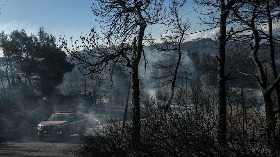 Φωτιά στην Κορινθία: Αυτές είναι οι αποζημιώσεις που θα λάβουν οι πυρόπληκτοι