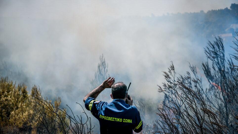Θεσσαλονίκη: Υπό έλεγχο οι φωτιές σε Διαβατά και Βαθύλακκο