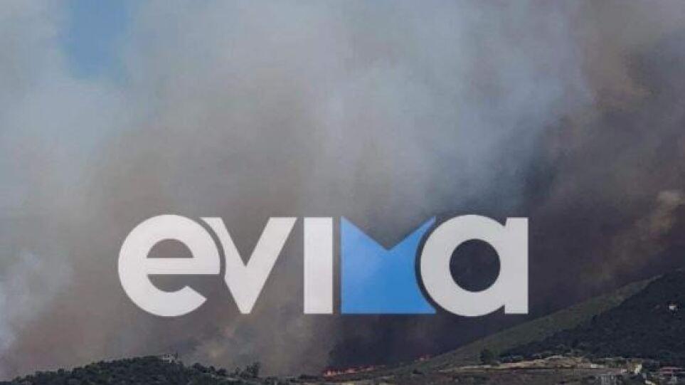 Μήνυμα αγωνίας από τον δήμαρχο Καρύστου: Ανεξέλεγκτη η φωτιά στα Νέα Στύρα, κλειστός ο δρόμος