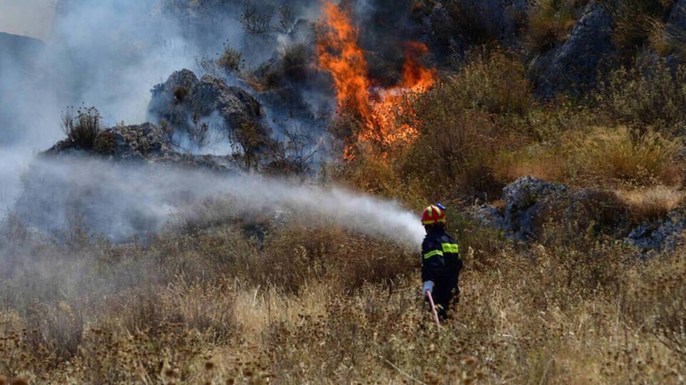 Φωτιά τώρα στη Χασιά