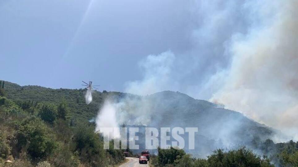 Αχαϊα: Σε ύφεση και χωρίς ενεργό μέτωπο η φωτιά στη Δροσιά