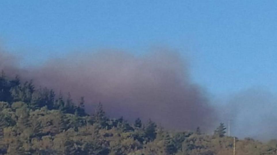 Φωτιά στη Χίο: Μάχη με τις φλόγες στην Κατάβαση – Δόθηκε εντολή προληπτικής εκκένωσης του χωριού