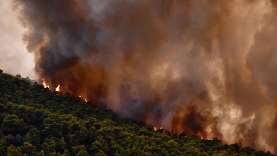 Φωτιές: Πολύ υψηλός κίνδυνος πυρκαγιάς σε Εύβοια και Αττική για την Πέμπτη