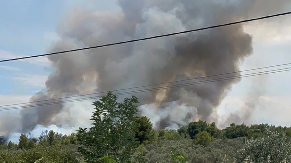 Ανατροπή στην υπόθεση πυρκαγιών στον Θεολόγο: «Δεν έχω κάνει εγώ τους εμπρησμούς» λέει τώρα ο 14χρονος