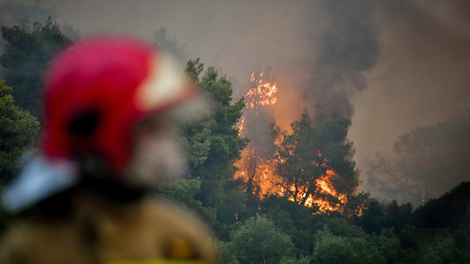 Φωτιά στα Βίλια: Οριοθετημένη στο μεγαλύτερος μέρος της η πυρκαγιά – Ανησυχία για τις αναζωπυρώσεις