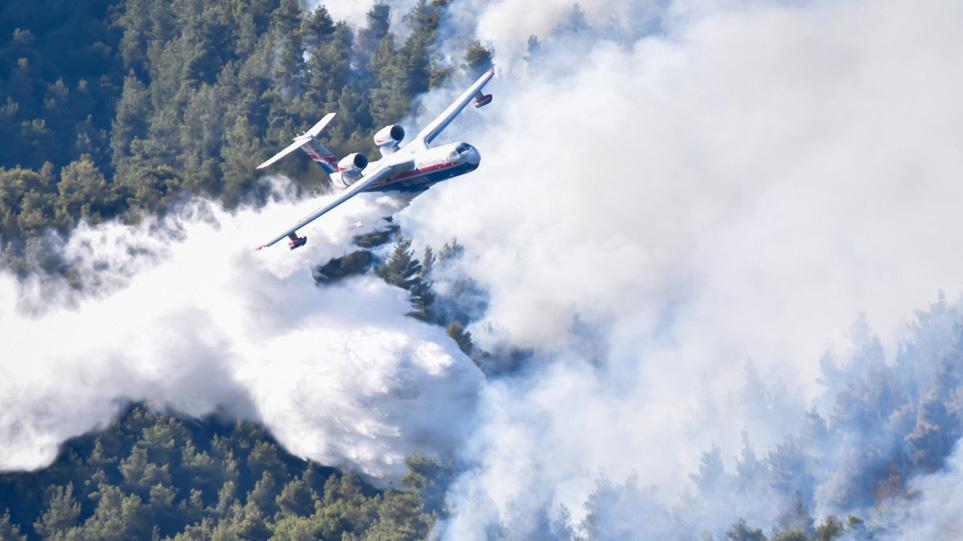 Φωτιά στα Βίλια: Μάχη με τις αναζωπυρώσεις – Δέκα χιλιόμετρα το πύρινο μέτωπο