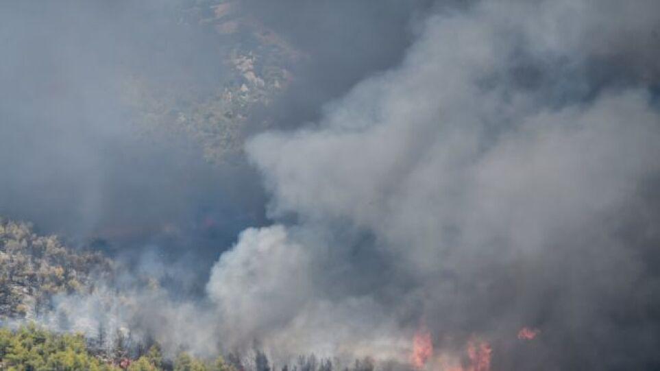 Θεολόγος: Έβαζα φωτιές γιατί μου άρεσε να βλέπω φλόγες και καπνό, λέει ο 14χρονος εμπρηστής