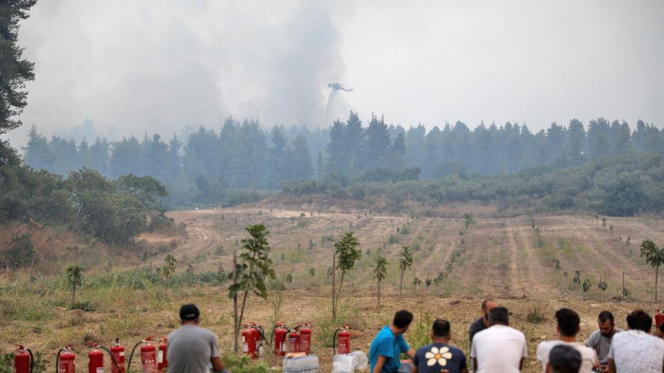 Φωτιά στην Εύβοια: Δείτε φωτογραφία – Πάνω από 500.000 τα καμένα στρέματα