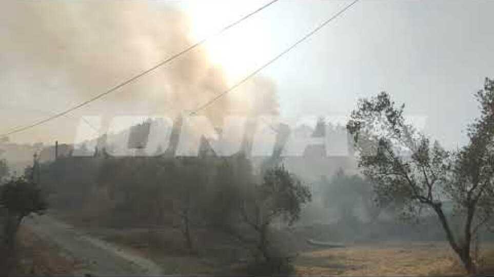 Φωτιά στη Ζάκυνθο: Προσήχθη ένας ύποπτος για εμπρησμό στο Αργάσι