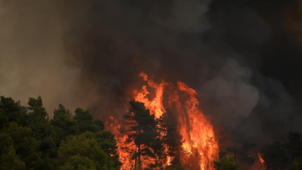 Πυροσβεστική: Τριάντα εννέα δασικές πυρκαγιές το τελευταίο 24ωρο