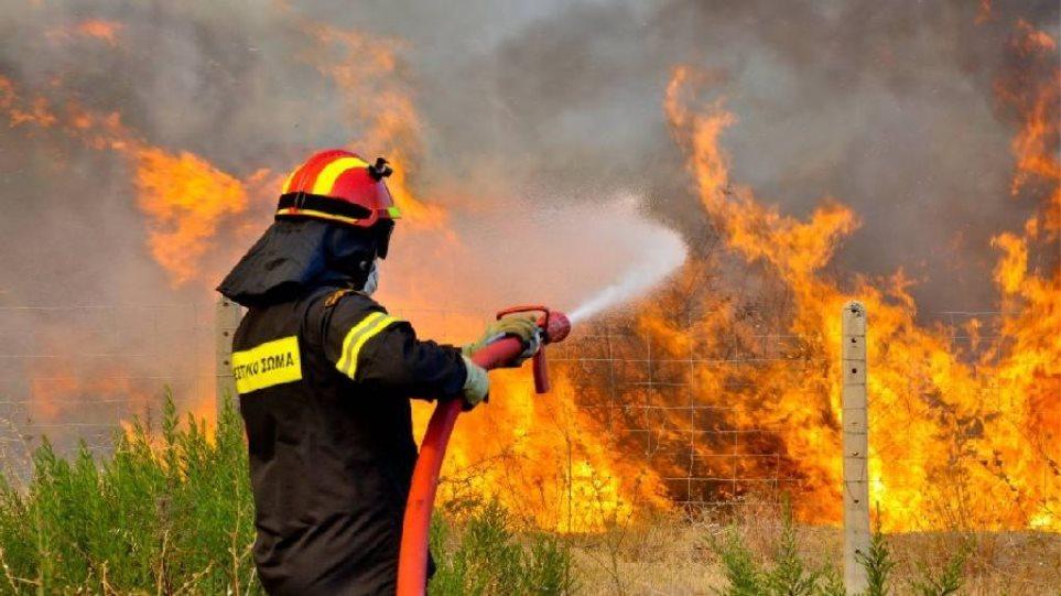 Πυροσβεστική: 42 δασικές πυρκαγιές εκδηλώθηκαν το τελευταίο 24ωρο