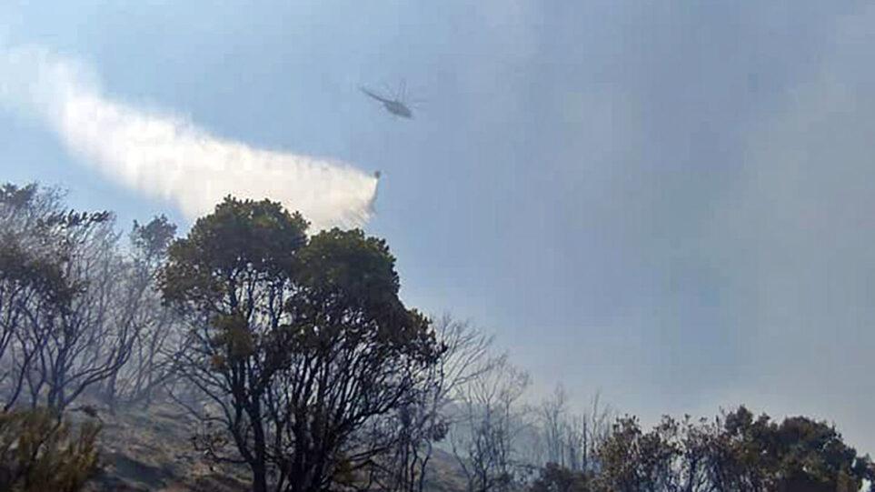 Υπό έλεγο η φωτιά στο Παγγαίο Καβάλας – Προσήχθη ύποπτος για εμπρησμό