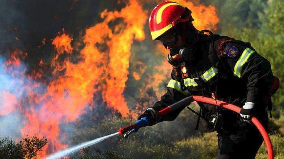 Πυροσβεστική: 38 δασικές πυρκαγιές εκδηλώθηκαν το τελευταίο 24ωρο
