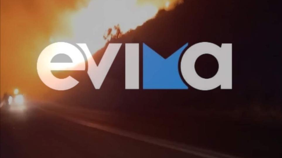 Νότια Εύβοια: Ολονύχτια μάχη με τις φλόγες στην περιοχή Φυγιά της Καρύστου – Φωτογραφίες