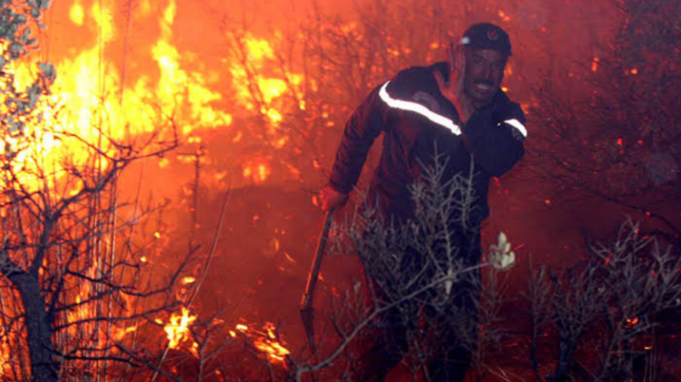 Αλγερία: Τουλάχιστον 42 οι νεκροί στις πυρκαγιές που σαρώνουν τον βορρά της χώρας – Δείτε βίντεο