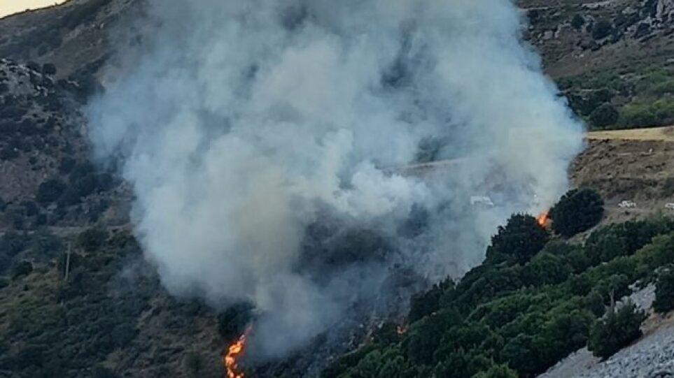 Φωτιά στο Λασίθι – Επιχειρεί η πυροσβεστική