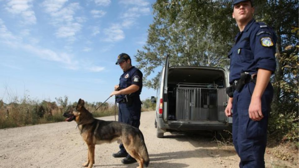 ΣτΕ: «Πράσινο φως» για την πρόσληψη 950 συνοριακών φυλάκων