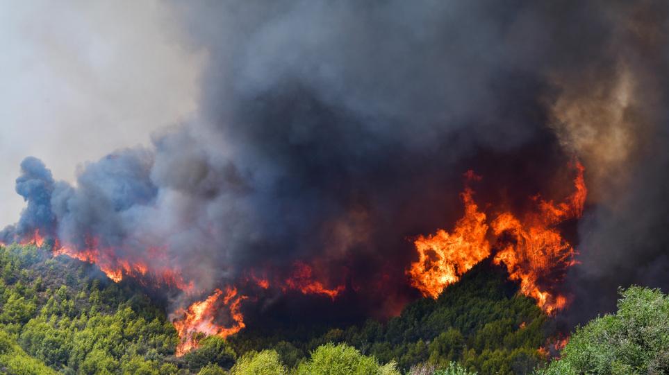Πυροσβεστική: 52 δασικές πυρκαγιές εκδηλώθηκαν το τελευταίο 24ωρο