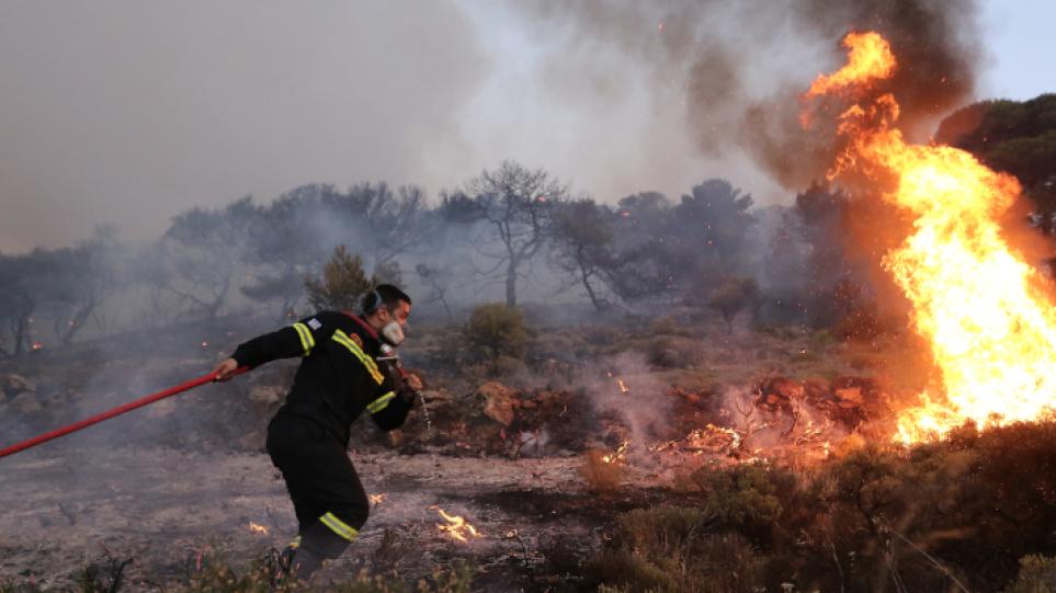 Εύβοια: Φωτιά ξέσπασε σε δασική έκταση