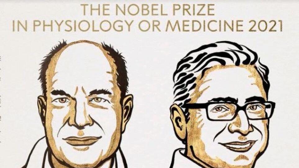 Στους David Julius και Ardem Patapoutian το Νόμπελ Ιατρικής